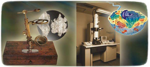 dawin-gunumuz-mikroskop-1