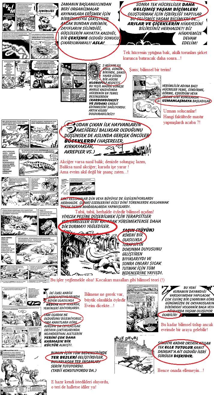 evrimcikitapserisi-1
